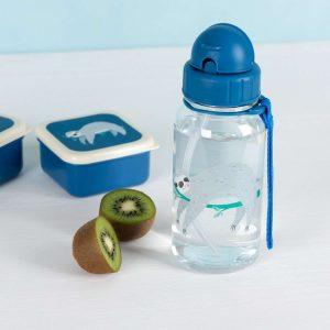 Tuppers y Botellas de Aprendizaje